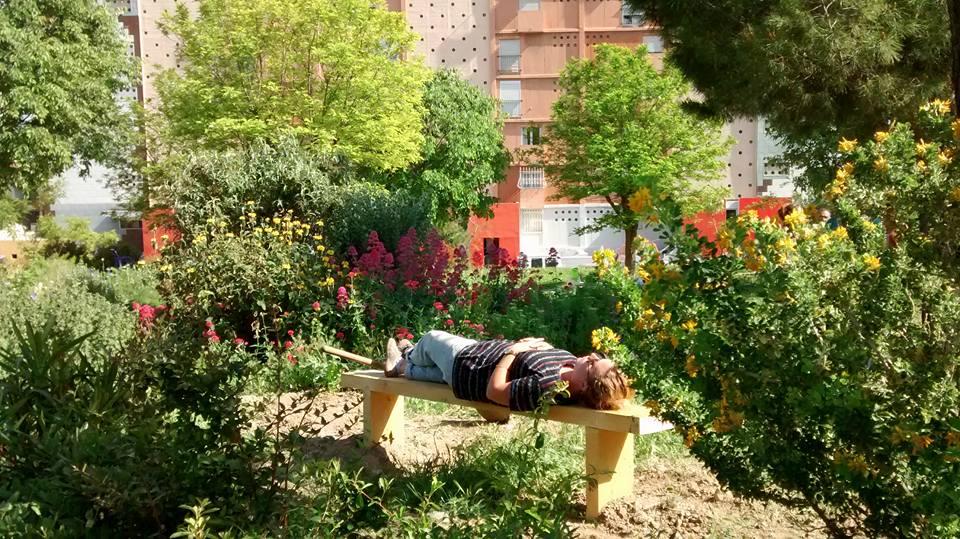 Au jardin partagé de Campagne Lévêque