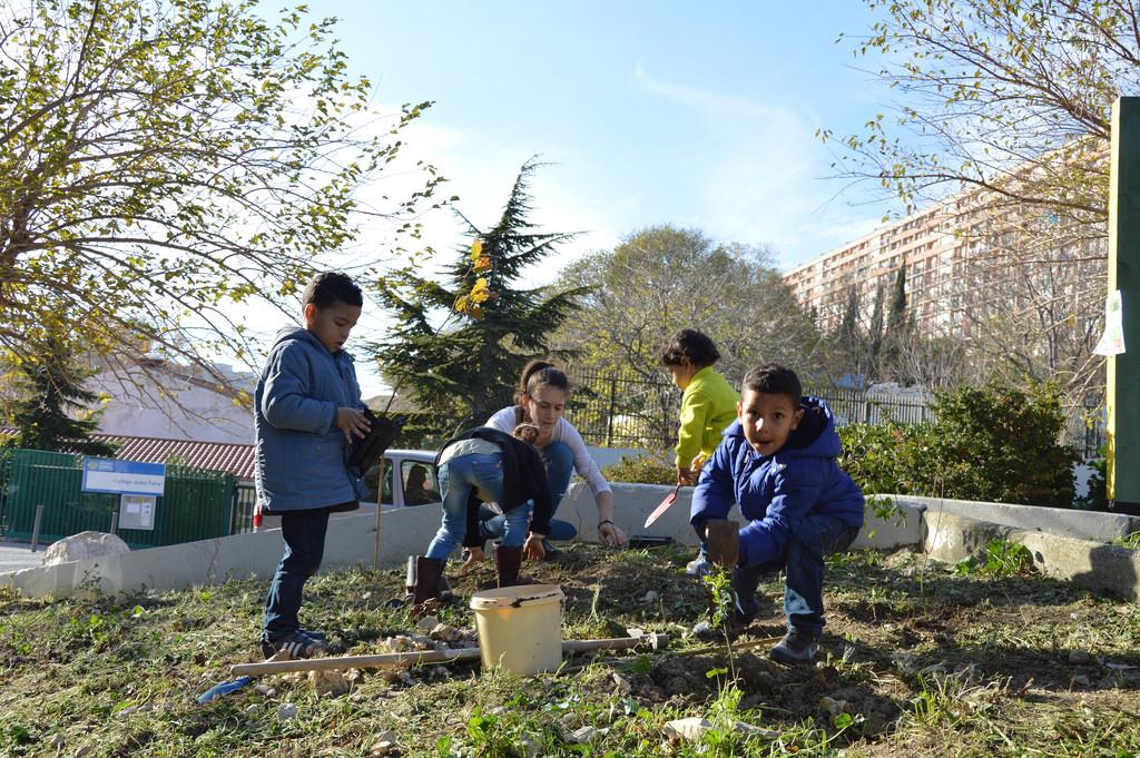 Plantation d'arbres et ateliers de sensibilisation à l'environnement